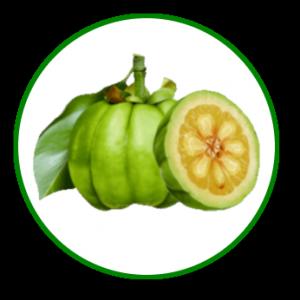 Reducelant Garcinia: des ingrédients spécialement sélectionnés pour vous aider à perdre du poids et garder la ligne